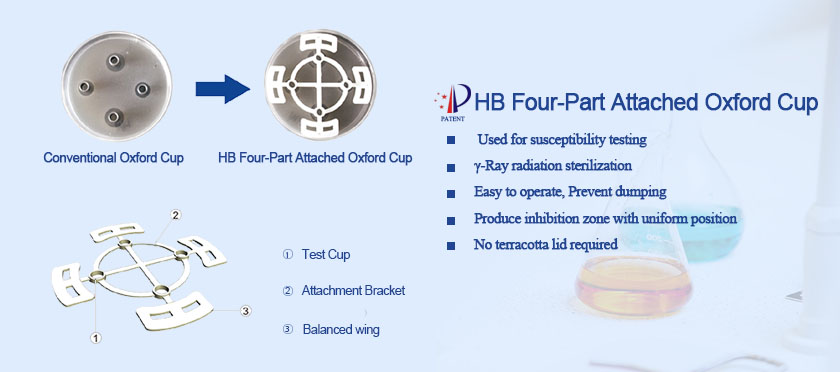 HB Four-Part Attached Oxford Cup
